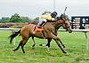 Bakyt winning at Delaware Park on 8/23/14