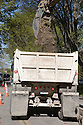 An excavator dumps dirt into a truck bed. The cities of Palo Alto and Mountain View are jointly constructing a reclaimed water pipeline to carry recycled water from the Palo Alto Regional Water Quality Control Plant to customers along East Bayshore Parkway and Mountain View's North Bayshore area.