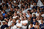 Tottenham fans during UEFA Champions League match, Final Roundl between Tottenham Hotspur FC and Liverpool FC at Wanda Metropolitano Stadium in Madrid, Spain. June 01, 2019.(Foto: nordphoto / Alterphoto /Manu R.B.)