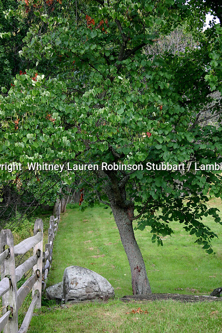 Breathtaking Scenic Photography Pennsylvania<br /> <br /> Gettysburg, red moon, canon, fence, botanical garden, chairs,<br /> Fountain, trees,