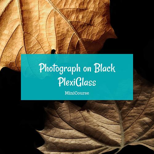 Photographing on Black Plexi-Glass MiniCourse