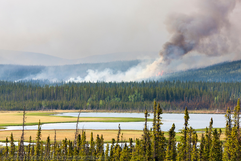 Eagle Trail forest fire near Tok, Alaska, May, 2010.