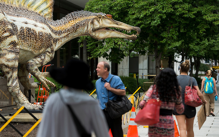 UNITED STATES - SEPTEMBER 8: Pedestrians walk past the newly erected replica of the Spinosaurus, the largest predatory dinosaur to ever roam the Earth, in front of the National geographic Society in Washington on Monday, Sept. 8, 2014. An exhibit on the Spinosaurus opens Friday, Sept. 12th and runs through April 1, 2015. (Photo By Bill Clark/CQ Roll Call)