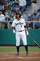 Eugene Helder (9) of the Everett AquaSox bats against the Boise Hawks at Everett Memorial Stadium on July 20, 2017 in Everett, Washington. Everett defeated Boise, 13-11. (Larry Goren/Four Seam Images)