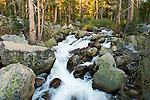Spring snow melt in the High Sierra flows down Pacific Creek on its way to the North Fork of the Mokelumne River near Pacific Grade Summit, California