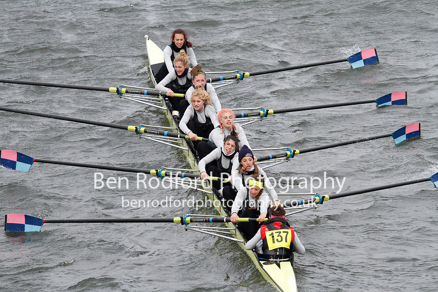 Crew: 137  I.S.I.S. E. STEIN Gavirate - Italy  Event: Girls CHAMP eights<br /> <br /> Schools' Head of the River 2017<br /> <br /> To purchase this photo, or to see pricing information for Prints and Downloads, click the blue 'Add to Cart' button at the top-right of the page.