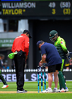 The bails are put back on after being removed due to the wind during the One Day International cricket match between the NZ Black Caps and Pakistan at the Basin Reserve in Wellington, New Zealand on Saturday, 6 January 2018. Photo: Dave Lintott / lintottphoto.co.nz