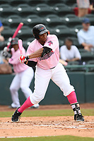 Hickory Crawdads first baseman Curtis Terry (29) swings at a pitch during the game with the Charleston Riverdogs at L.P. Frans Stadium on May 12, 2019 in Hickory, North Carolina.  The Riverdogs defeated the Crawdads 13-5. (Tracy Proffitt/Four Seam Images)