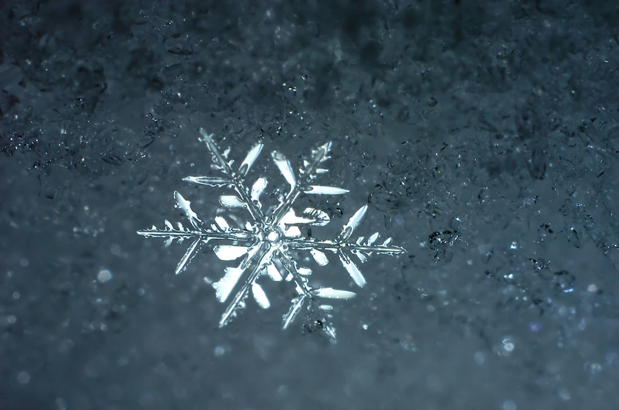 Micro image of a snowflake where it naturally landed. Lighted from behind to emphasize the specular highlights which is why the exposure makes the other snow darker.Some false background color may have been added in post production, otherwise this is just how it came into and out of the camera.