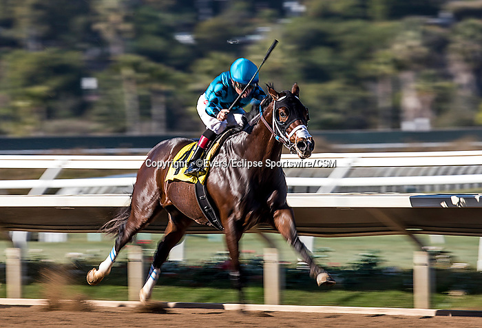 November 24, 2018:  RDamiano with Drayden Van Dyke breaks his maiden at Del Mar on November 24, 2018 in Del Mar, California. Evers/Eclipse Sportswire/CSM
