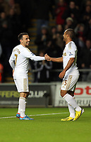 Sunday, 28 November 2012<br /> Pictured: Leon Britton (L) and Wayne Routledge (R).<br /> Re: Barclays Premier League, Swansea City FC v West Bromwich Albion at the Liberty Stadium, south Wales.