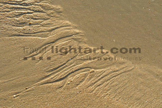 www.travel-lightart.com, ©Paul J. Trummer, Andalucia, Andalusia, Barrosa Beach, Cadiz, Chiclana de la Frontera, continent, continents, Costa de la Luz, countries, Country, Europe, Geography, Novo Sancti Petri, Spain, Andalusien, Barrosa Strand, Erdteil, Erdteile, Europa, Geografie, Kontinent, Kontinente, Küste des Lichts, Land, Länder, Spanien, Staat, Staaten, Küste, Küsten, Küstenlandschaft, Landschaftsform, Landschaftsformen, Meeresstrand, Sandstrand, Sandstrände, Straende, beaches, coast, coastal landcsapes, coastline, coastlines, coasts, landscape form, landscape forms, landscapes, sandy beach, sandy beaches, Atlantic, bodies of water, body of water, ocean, oceans, ozean, ozeans, sea, seas, Atlantik, Atlantischer Ozean, Gewässer, Meer, Meere, Ozeane, elements, H2O, Nature, Muster, Spur, Struktur, pattern, structure, track, tracks