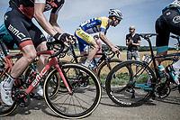 Thomas Sprengers (BEL/Sport Vlaanderen Baloise) in the peloton. <br /> <br /> Binckbank Tour 2018 (UCI World Tour)<br /> Stage 6: Riemst (BE) - Sittard-Geleen (NL) 182,2km