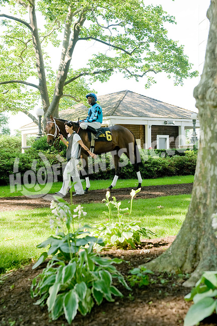 Doe before The Beautiful Day Stakes at Delaware Park on 5/31/12