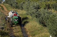 TURKEY Manisa, cultivation of grapes and olives at farm, farmer with tractor and water trailer / TUERKEI, Anbau von Tafeltrauben und Oliven auf einer Farm, Bauer transportiert Wassertank mit Traktor