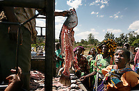 Silent Slaughter: Global Fish Crisis: Still Waters, April 2007 National Geographic Magazine