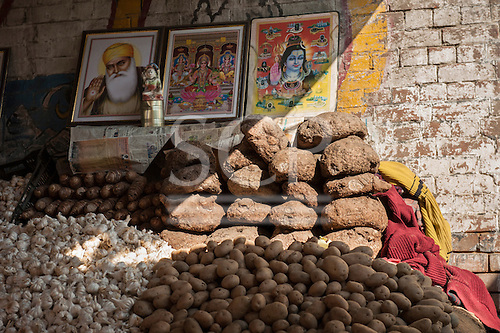 Amritsar, Punjab, India. Market stall selling dung pats, garlic and potatoes. overseen by posters of Sikh and Hindu deities.