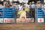 2015 Cody Xtreme Bulls