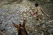 A young boy pulls his horse through a icy river bed along the Amarnath trekking route in Kashmir, India. Hindu pilgrims brave sub zero temperature and high latitude passes and make their pilgrimage to reach the sacred Amarnath cave, which houses a lingam - a stylized phallus, worshiped by Hindus as a symbol of God Shiva. Photo: Sanjit Das/Panos