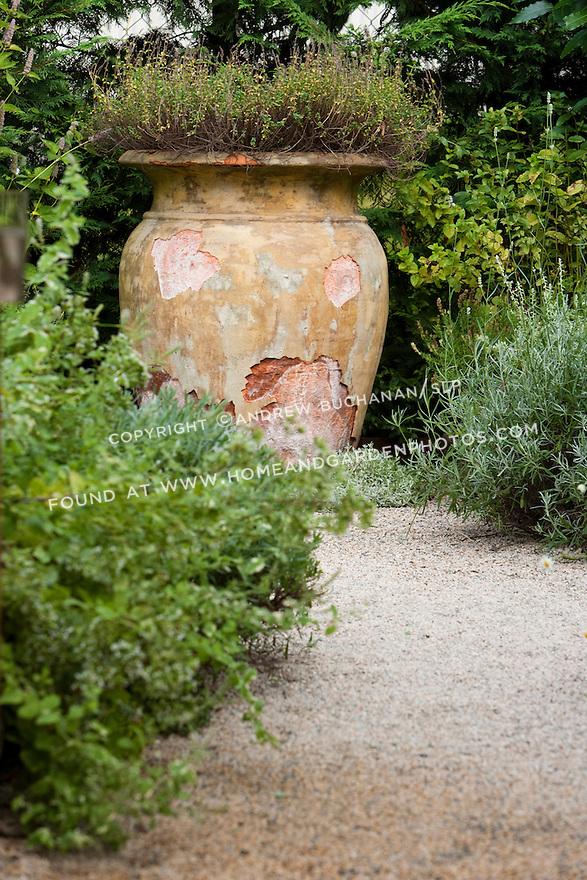 An antique terra cotta pot sits admist the perennials in a Seattle backyard.