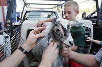 Kodi Kelley, 11, of Deming, NW Washington Fair. August 16, 2009 PHOTOS BY MERYL SCHENKER ..