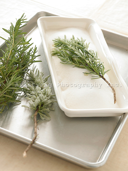 Holiday decoration made by dipping rosemary branches in sugar