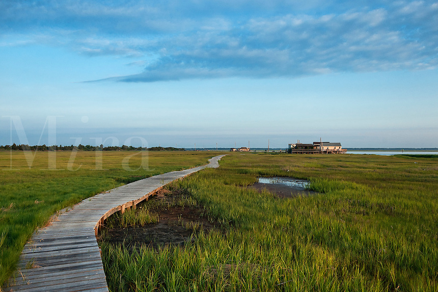 Remote beach shack located on a bay salt marsh, New Jersey, USA.