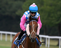 Olivia Brend ridden by Hollie Doyle goes down to the start of  The Crouch's Down Maiden Auction Fillies Stakes during Horse Racing at Salisbury Racecourse on 13th August 2020