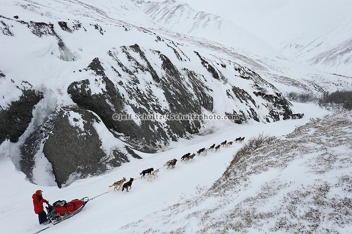 Jason Mackey runs through a narrow, glaciated part of the trail shortly after cresting the summitt of Rainy Pass on his way to Rohn.   March 4, 2013.   Iditarod 2013