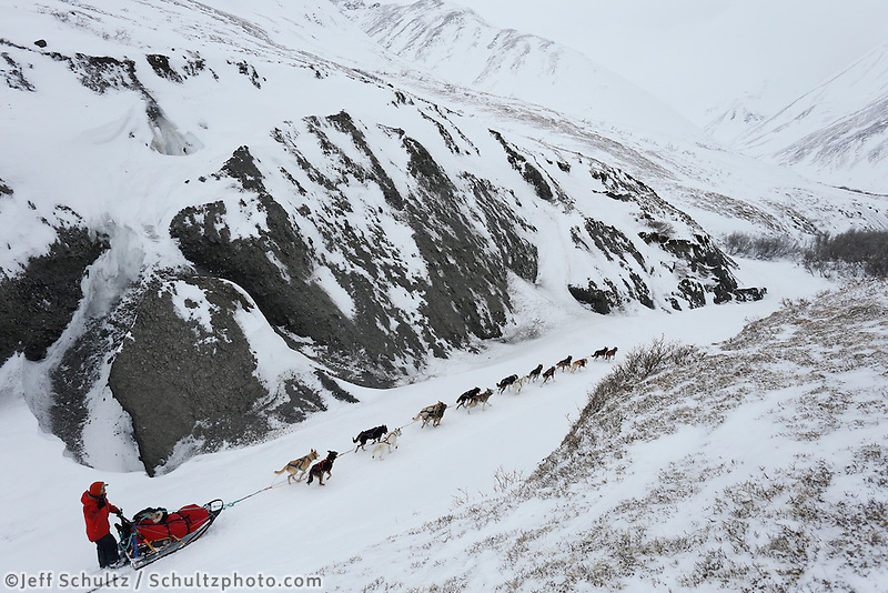 Jason Mackey runs through a narrow, glaciated part of the trail shortly after cresting the summitt of Rainy Pass on his way to Rohn.   March 4, 2013.   Iditarod 2013