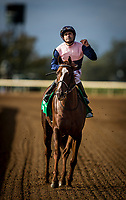 LEXINGTON, KY - OCTOBER 07: Joe Bravo celebrates aboard Zippesa #5 after winning the First Lady Stakes at Keeneland Race Course on October 07, 2017 in Lexington, Kentucky. (Photo by Alex Evers/Eclipse Sportswire/Getty Images)
