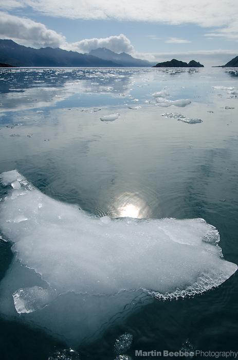 Tiny iceberg floating in Aialik Bay, Kenai Fjords National Park, Alaska