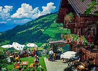 Austria, Tyrol, Westendorf: at Zieplhof-Alm, Mountain Inn | Oesterreich, Tirol, Westendorf: auf der Zieplhofalm