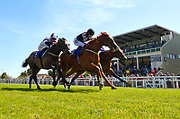 Winner of The Penang Turf Club Malaysia Novice Stakes (Plus 10 Race) (Class 4) Rumble in the jungle ridden by Tom Queally and trained by Richard Spencer during Afternoon Racing at Salisbury Racecourse on 17th May 2018