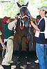 Sean Jones saddling Prince Vincenzo at Delaware Park on 9/23/15
