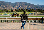 October 29, 2019 : Scenes from around the track as horses prepare for the Breeders' Cup at Santa Anita Park in Arcadia, California on October 29, 2019. Scott Serio/Eclipse Sportswire/Breeders' Cup/CSM