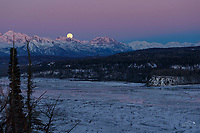 Winter landscape of a full moon rising over the Talkeetna Mountains at dusk in the Matanuska Valley near Palmer, Alaska.   Southcentral Alaska<br /> <br /> Photo by Jeff Schultz/SchultzPhoto.com  (C) 2019  ALL RIGHTS RESERVED