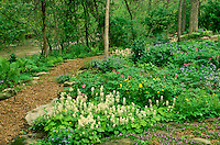 Shade garden path along stream made of mulch and quarry stones with summer blooming flowers
