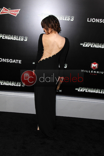 Catherine Castro<br /> at &quot;The Expendables 3&quot; Los Angeles Premiere, TCL Chinese Theater, Hollywood, CA 08-11-14<br /> David Edwards/Dailyceleb.com 818-249-4998