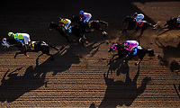 ARCADIA, CA - FEBRUARY 03: Lombo #4, ridden by Flavien Prat takes the field gate to wire on his way to winning the Robert B. Lewis Stakes at Santa Anita Park on February 3, 2018 in Arcadia, California. (Photo by Alex Evers/Eclipse Sportswire/Getty Images)