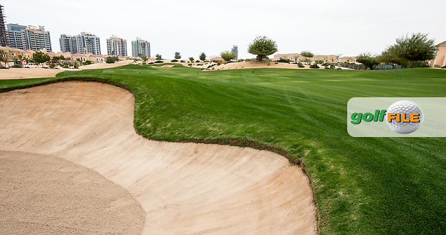 13th fairway at The Els Club , Dubai, United Arab Emirates.  28/01/2016. Picture: Golffile | David Lloyd<br /> <br /> All photos usage must carry mandatory copyright credit (&copy; Golffile | David Lloyd)