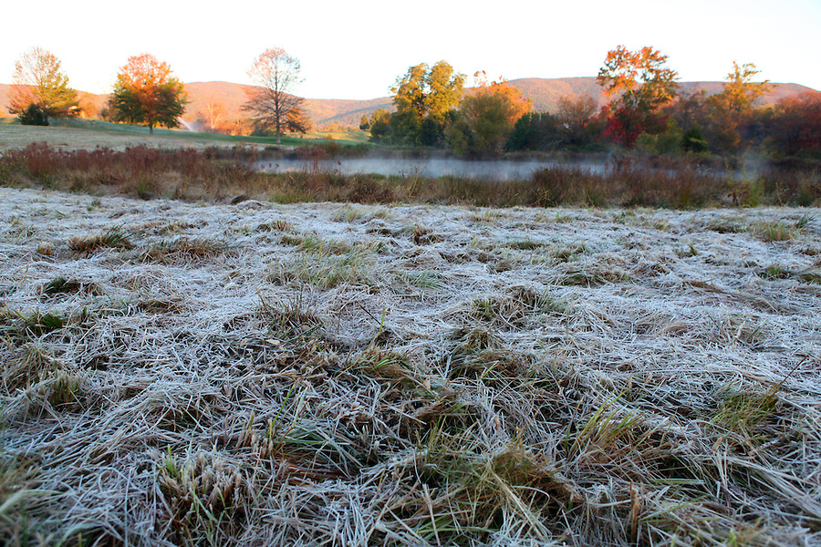 Frost cover field in Albemarle County, Va.