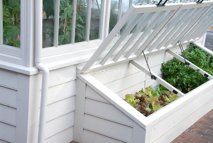 Cold-Frame-Vegetable-Garden-013846.jpg | Plant & Flower Stock ...