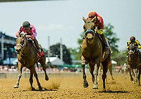 ELMONT, NY - JUNE 10: Abel Tasman #3 with Mike Smith up are victorious in the Acorn Stakes at Belmont Park on June 10, 2017 in Elmont, New York. (Photo by Alex Evers/Eclipse Sportswire/Getty Images)