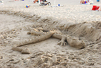Dragon made of sand on the beach