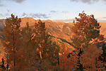 Autumn in the San Juan Mountains at sunset, high above Telluride, Colorardo, USA.
