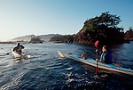 Sea kayakers, Clayoquot Sound, west coast of Vancouver Island, British Columbia, Canada,