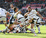 Charlie Davies of Wasps has his clearance kick charged down leading to Sale's second try - Aviva Premiership - Sale Sharks vs Wasps  - AJ Bell Stadium - Salford, Manchester - 5th October 2014  - Picture Simon Bellis/Sportimage
