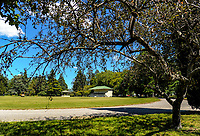 Queen Elizabeth Park in Masterton, New Zealand on Thursday, 16 November 2017. Photo: Dave Lintott / lintottphoto.co.nz