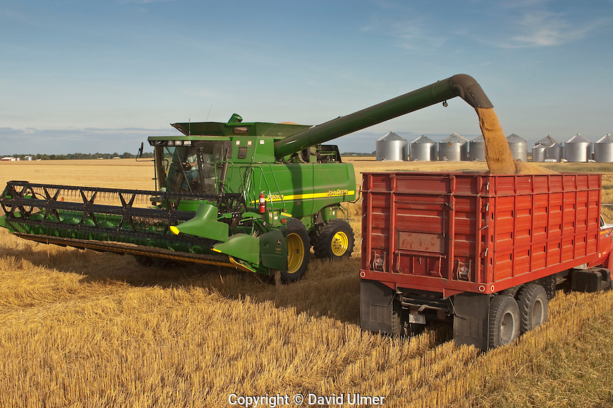 Emptying the combine